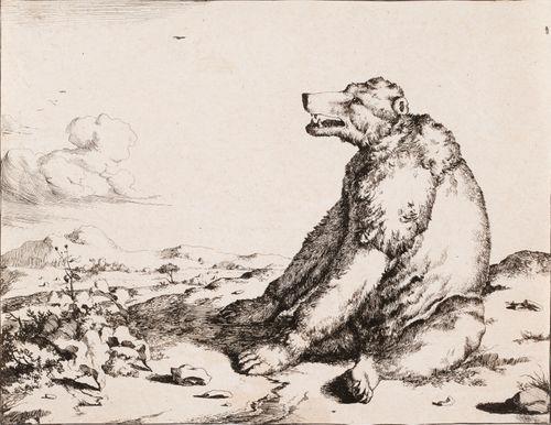 Istuva karhu sivulta