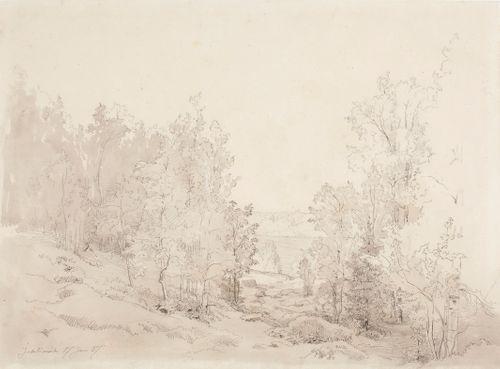 Metsämaisema, Juhtimäki