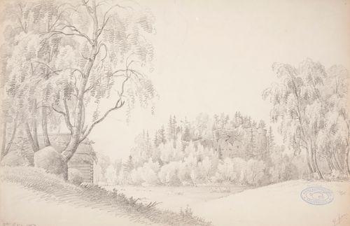 Maisema, jossa taustalla Raaseporin linnanrauniot