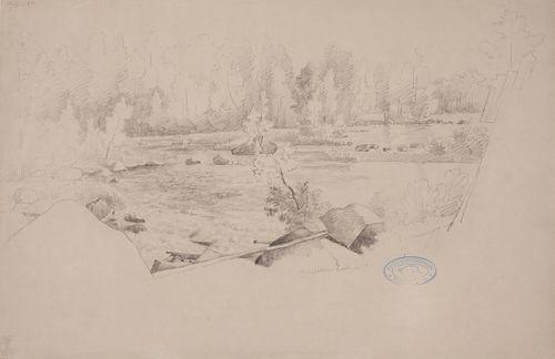 Maisema, etualalla koski ja taustalla tiheää nuorta metsää