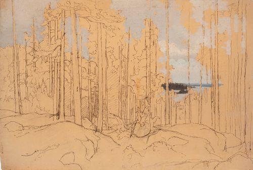 Männikkö lähellä järvenrantaa ; aloitettu öljymaalaus