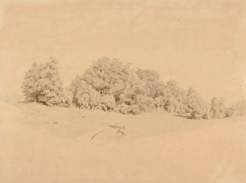 Maisema, vasemmalla tien takana lehtipuuryhmä, edessä oikealla avoin niitty