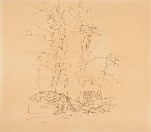 Pieni koju ja halkopino puiden juurella