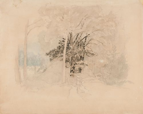 Metsätie, jota tulee koria päänsä päällä kantava nainen