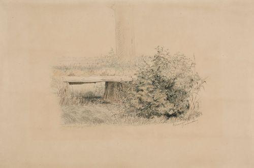 Tasankomaisema, jossa etualalla vasemmalla pensas, keskellä ojan yli kulkeva silta, taustalla puunrunko