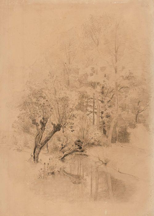 Metsää ja seisovaa vettä