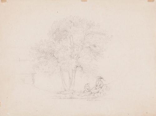 Kaksi puun alla istuvaa naista