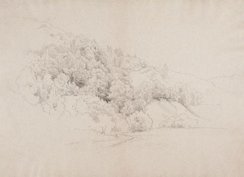 Metsäinen veteen laskeva rinne