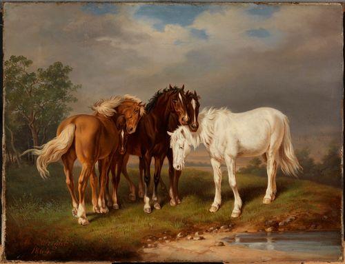 Hevosia, jäljennös Carl Wahlbomin litografian mukaan