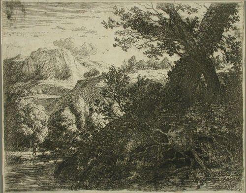 Kaksi puuta ja niiden juurakot
