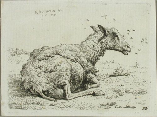 Lammas ja kärpäset