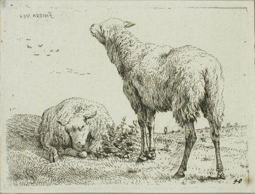 Kaksi lammasta ja lentäviä lintuja