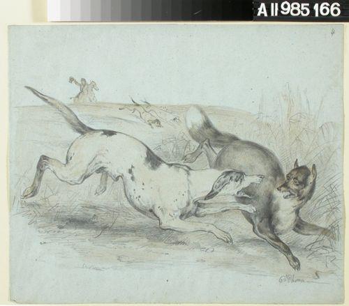 Ketunmetsästystä koirien ja hevosten kanssa. Etualalla oikealla hyökkää koira juoksevan ketun kimppuun.