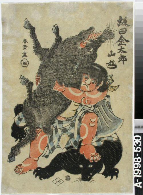 Kintaro Sakata painii vuorella villisian ja karhun kanssa