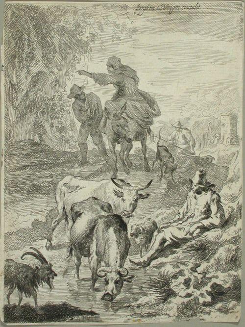 Karjaa juomalammikolla