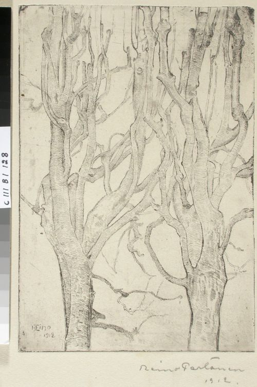 Lehdettömiä puita