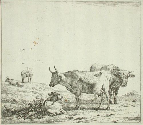 Sonni, lehmiä ja vasikka