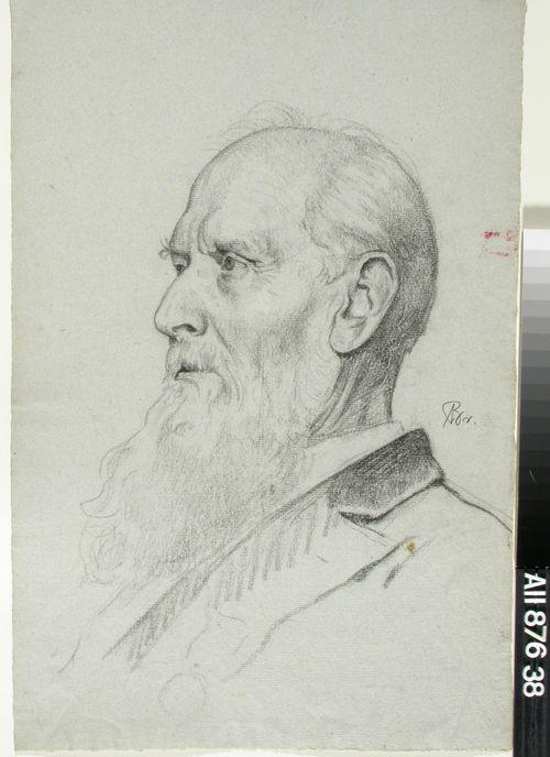Vanhan parrakkaan miehen muotokuva