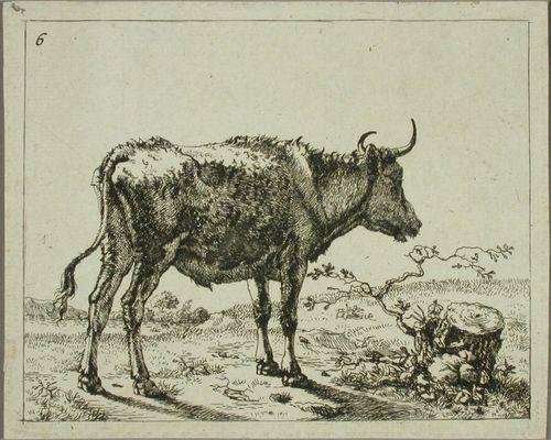 Seisova härkä