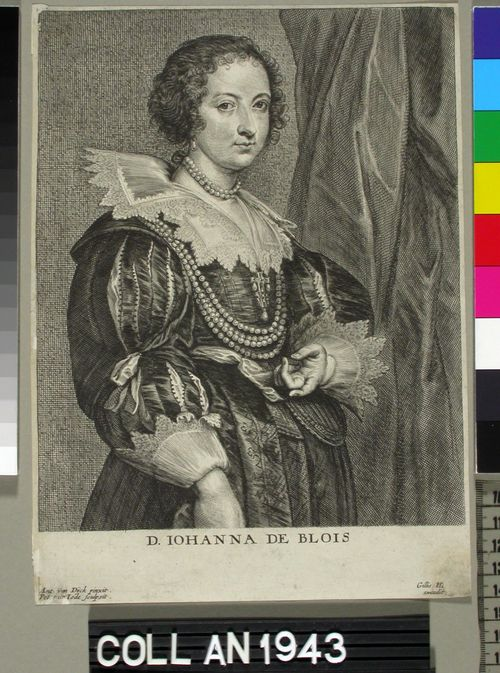 Johanne de Blois, puolivartalokuva