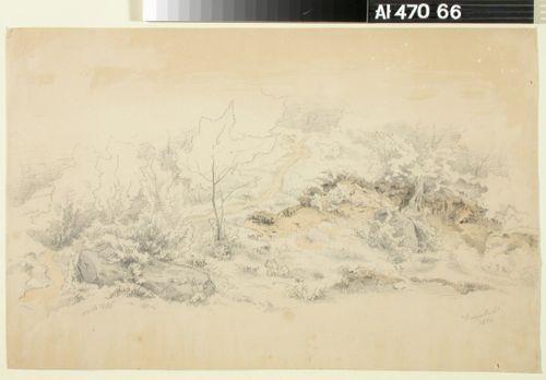 Mäenrinne ; Linna metsässä (kaksipuolinen teos)