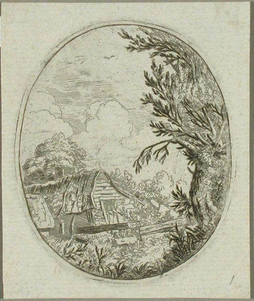 Maisema - taloja puiden keskellä