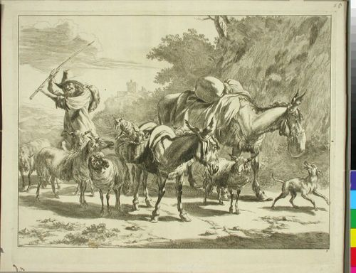 Karjaansa ajava paimenpoika
