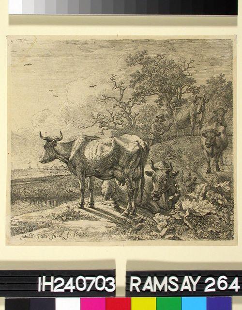 Paimen karjoineen