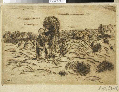 Viljankorjaaja pellolla