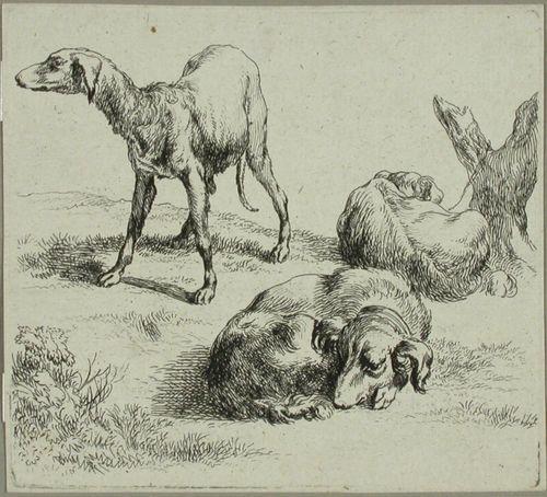 Kolme metsästyskoiraa