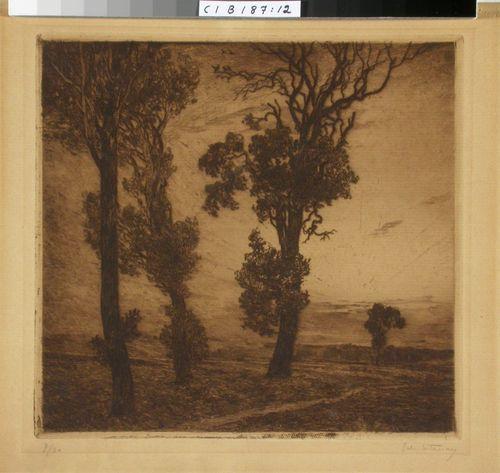 Kolme puuta