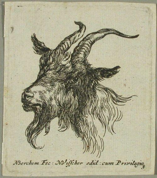 Pukin pää (Tête de bouc)