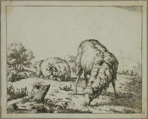 Kaksi lammasta, toinen einehtii toinen lepää