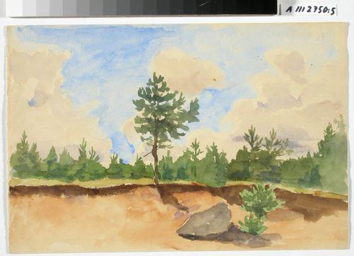 Maisemaharjoitelma; hiekkakuopan reuna, matalaa metsää