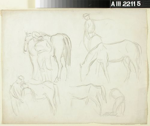 Harjoitelma, hevonen ja mies