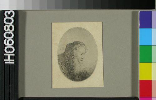 Vanha parrakas mies lakki päässään (Old bearded man in a cap)