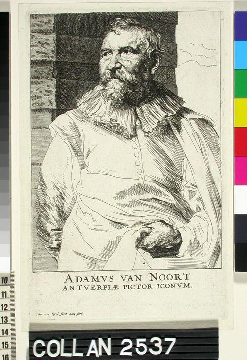 Adamus van Noort