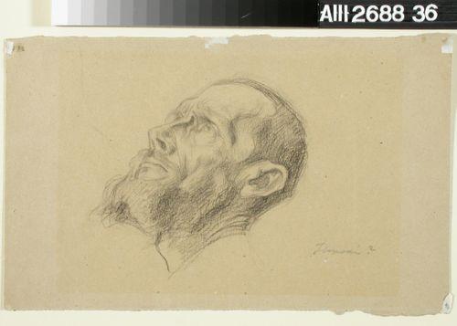 Miehen pää (Aksel Hjalmar Ilmoni)