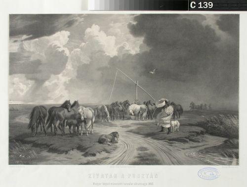 Hevosia pustalla
