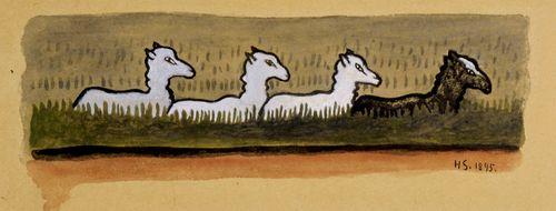 Lampaat rivissä
