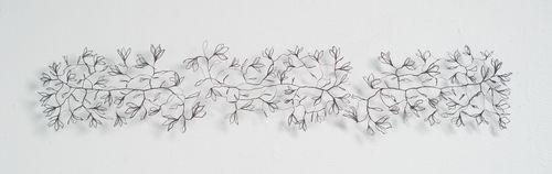 Varjon kukat II