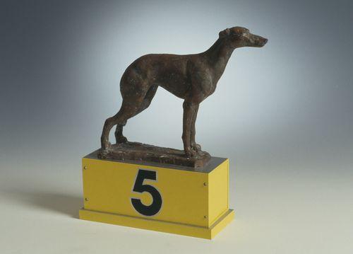 Koira n:o 5