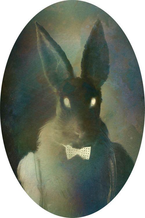 "Rabbit, sarjasta ""About Alice and the Rabbit"""